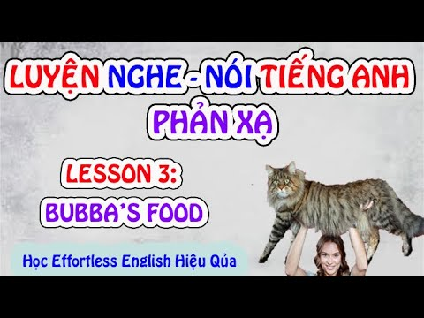 Unit 3: Bubba's Food – Luyện Nghe Nói Tiếng Anh Phản Xạ | How to practice Effortless English