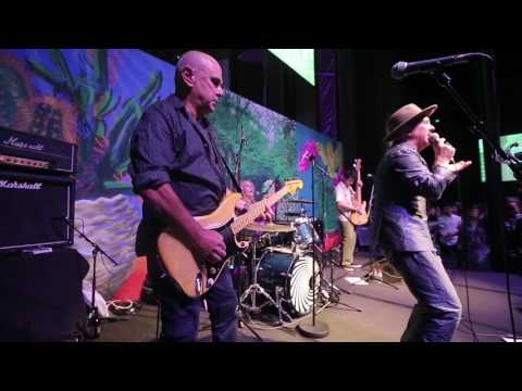 Dave Graney & The Coral Snakes. Night Of The Wolverine 2 ...LIVE...