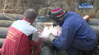 видео Газовые котлы отопления Лыткарино. Монтаж. Установка. Обслуживание