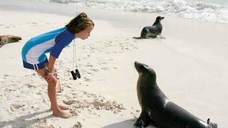 Deniz Aslanı Kıza Saldırdı. Sea Lion Attack