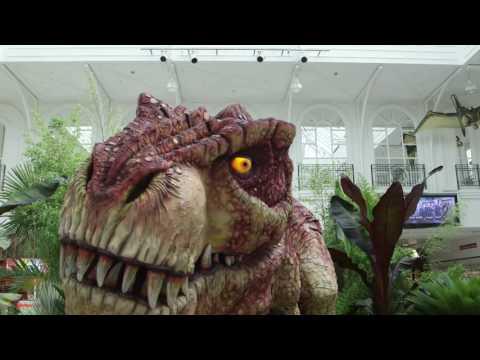 Telford Shopping Centre Dinosaur Exeprience