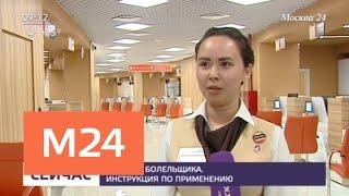 Смотреть видео Как получить паспорт болельщика к ЧМ-2018 - Москва 24 онлайн