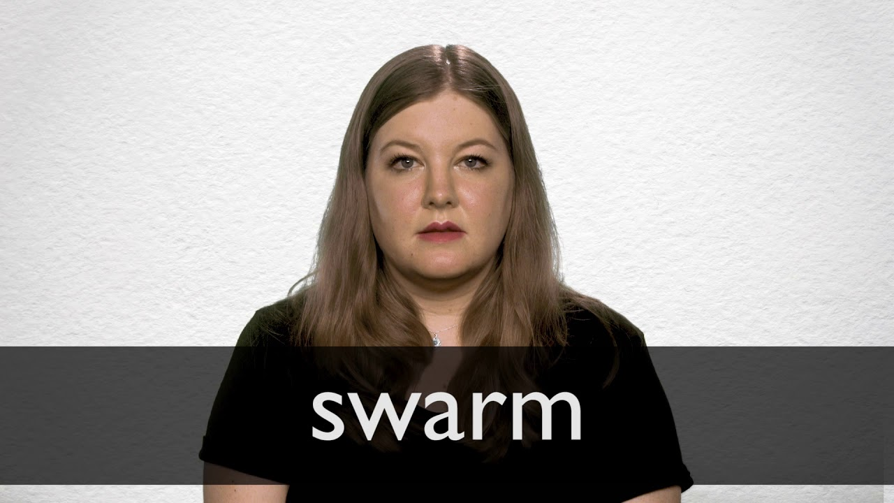 "Hindi Translation of ""swarm"" 