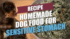Homemade Dog Food for Sensitive Stomach Recipe (for GI disorders)