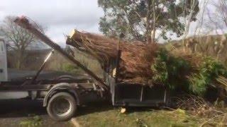 Best landscaper lawn mower grounds maintenance Truck.Lawn Care Set Up loading trees Irish