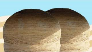 The World's Largest Balls