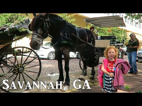 Carriage Ride Through Downtown Savannah, GA 2017!