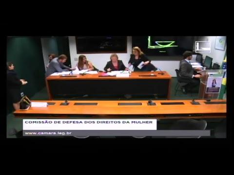 DEFESA DOS DIREITOS DA MULHER - Reunião Deliberativa - 29/05/2018 - 12:09