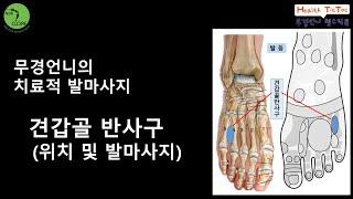 견갑골반사구(위치와 발마사지방법)