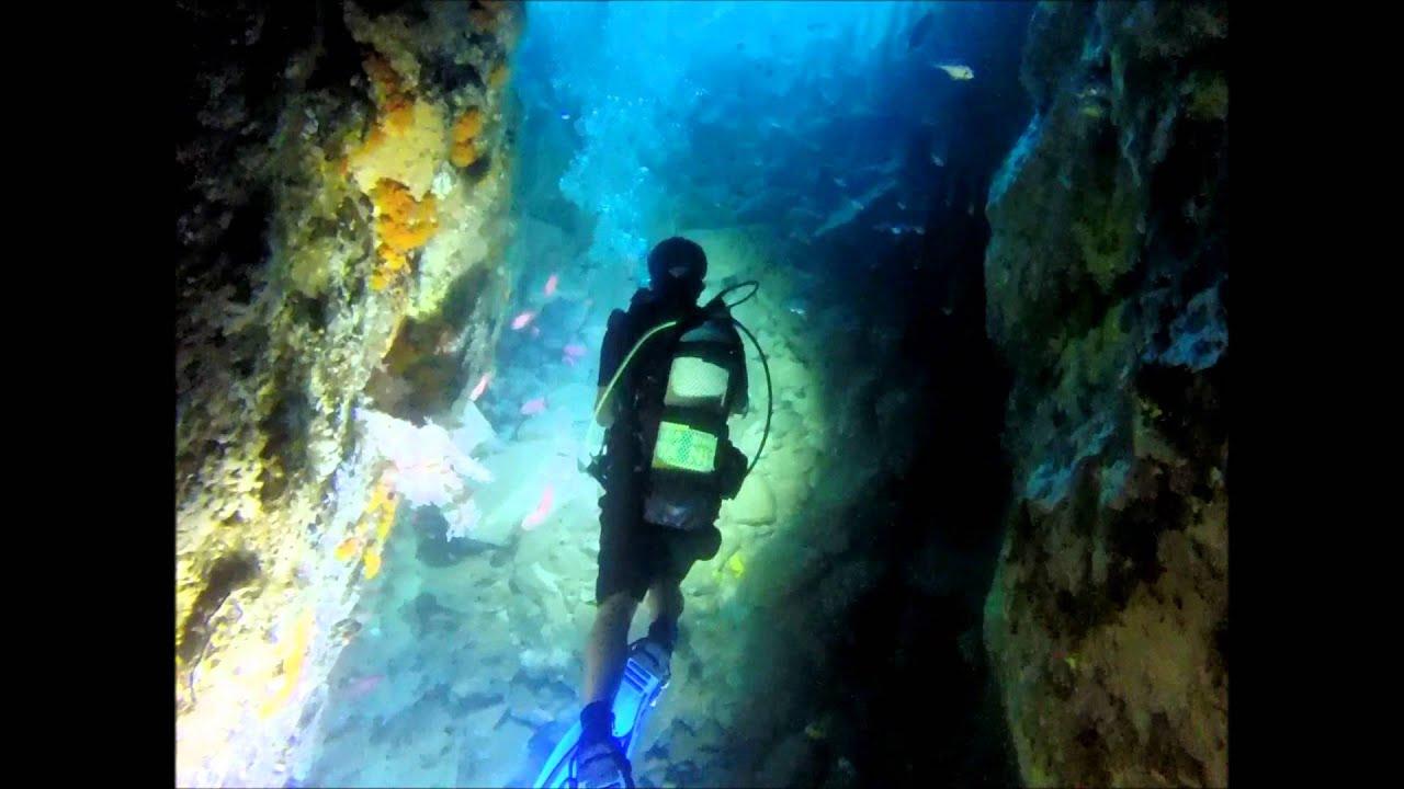 Fish Rock Cave | Fish Rock Cave Dive South West Rocks Youtube