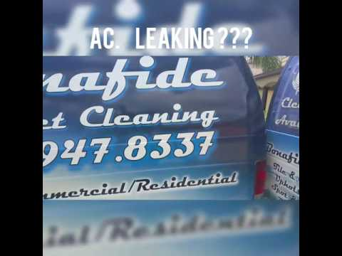 Carpet cleaner carpet cleaning lake mary fl