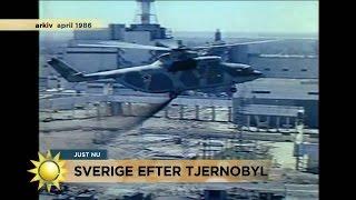 30 år efter Tjernobyl