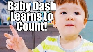 baby dash learns to count 1yr 5m