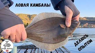 ЛОВЛЯ КАМБАЛЫ ДЕЛЮСЬ ОПЫТОМ НЕОЖИДАННЫЙ ТРОФЕЙ рыбалка в Норвегии с берега Норвегия Рыбалка