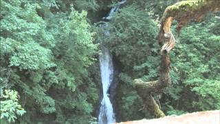 Accessible Adventures: Water Falls Along the Historic Columbia River Highway thumbnail