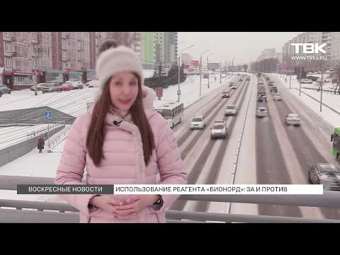"""Бионорд: """"за"""" и """"против"""". Красноярск"""