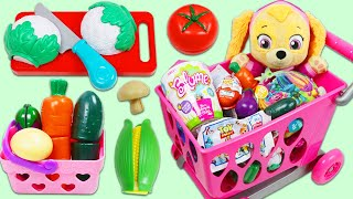 Paw Patrol Baby Skye Goes Grocery Shopping with Toy Cash Register and Shopping Cart Playset!