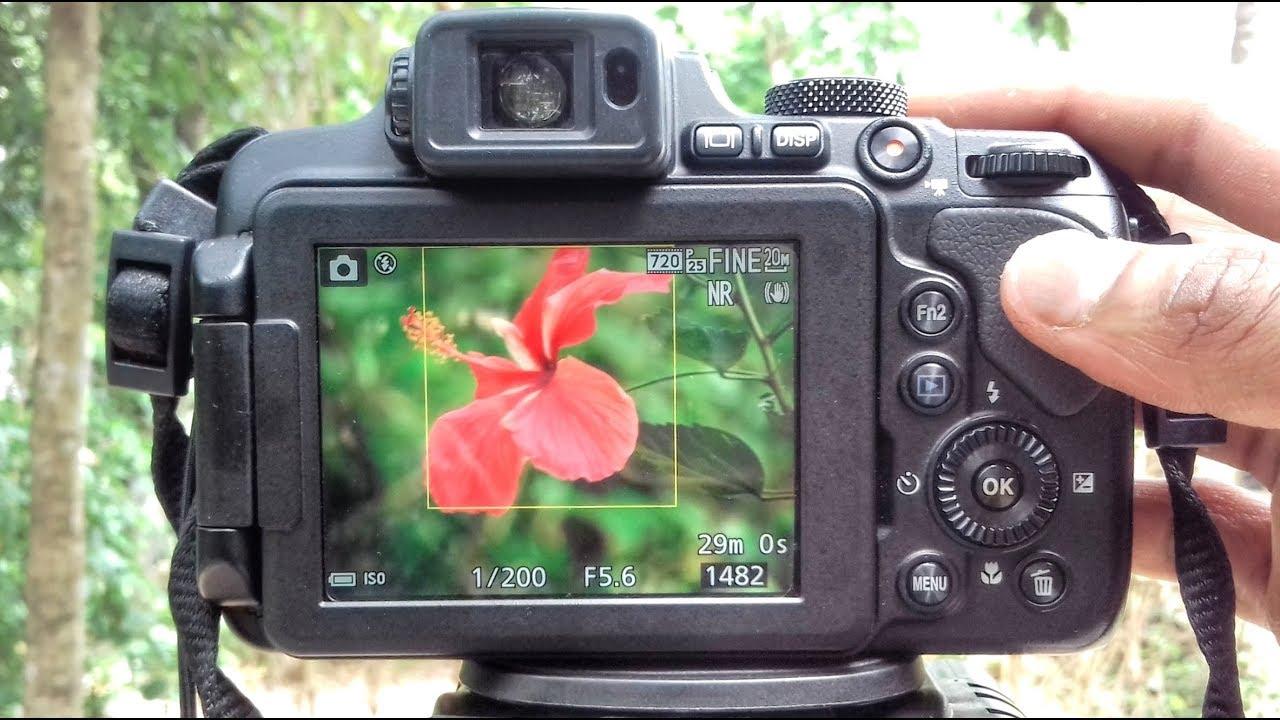 How to blur Background Nikon coolpix Camera B700 P1000 P900 B500 Manual Mode Tutorial 2018 - YouTube