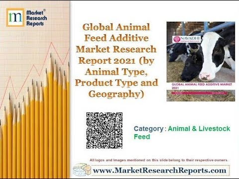 Global Animal Feed Additive Market Research Report 2021