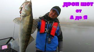 Как поймать много рыбы когда не клюёт Самая уловистая оснастка Дроп Шот Drop Shot от А до Я