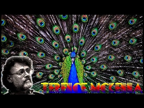Terence Mckenna: Nature is Conscious