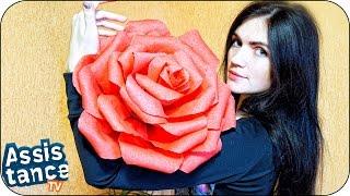 Как сделать ГИГАНТСКИЕ РОЗЫ из БУМАГИ / DIY ДОМА СВОИМИ РУКАМИ(Как сделать огромные, просто гигантские розы из гофрированной бумаги для украшения своего дома или же для..., 2016-02-28T16:43:55.000Z)