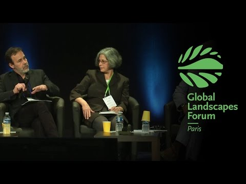 High-level plenary: Science-policy exchange GLF 2015