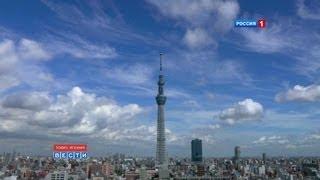 В Токио для посетителей открылась самая высокая в мире телебашня To...