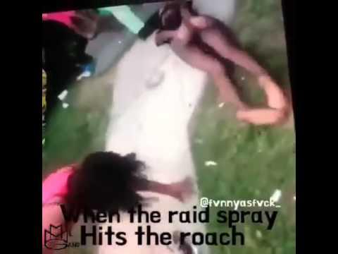 hqdefault when the raid spray hits the roach youtube