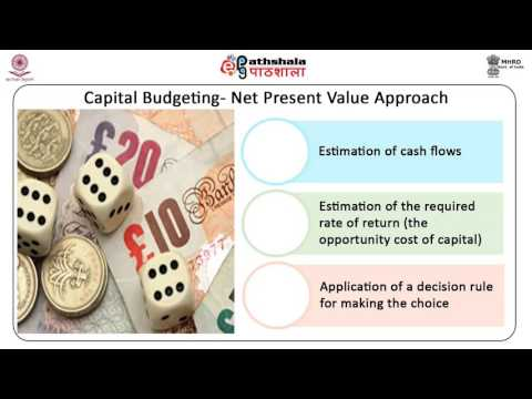Multinational  Capital Budgeting (BSE)