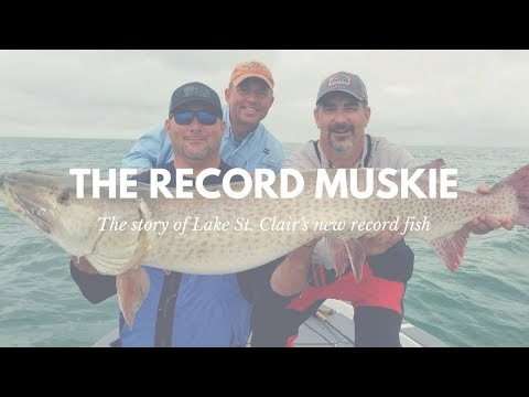 The Lake St. Clair Record Fish Catch - Muskie * Original Video*