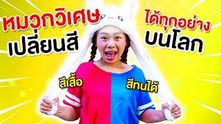 หมวกวิเศษเปลี่ยนสีได้ทุกอย่างบนโลก | Pony Kids