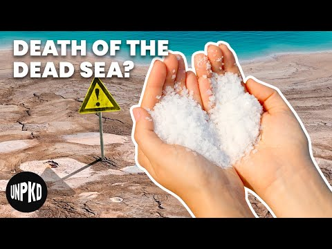 What Can We Do To Stop The Dead Sea From Dying?