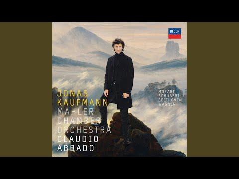 """Wagner: Lohengrin, WWV 75 / Act 3 - """"In fernem Land, unnahbar euren Schritten"""""""