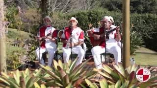 Grupo de samba raiz e chorinho para festa de casamento, aniversário e eventos  Apito de Mestre