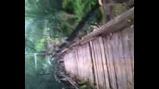 video seram ambruk saat di sebrangi warga di jembatan balik papan