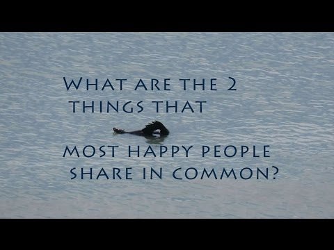 What are the 2 things that most happy people share in common? - Vlog 2