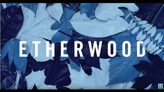 Etherwood ft. Logistics & Eva Lazarus - Revive