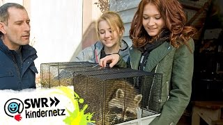 Clara und Jule geben Tierschutz-Tipps   Tiere bis unters Dach   SWR Kindernetz