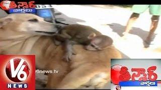 Kothi Katha In Warangal - Teenmaar News