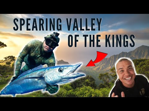 Spearfishing Hawaii EPIC DAY In Valley Of The Kings {w/Justin Lee}