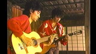 1995 森とマルチメディアと宮沢賢治.
