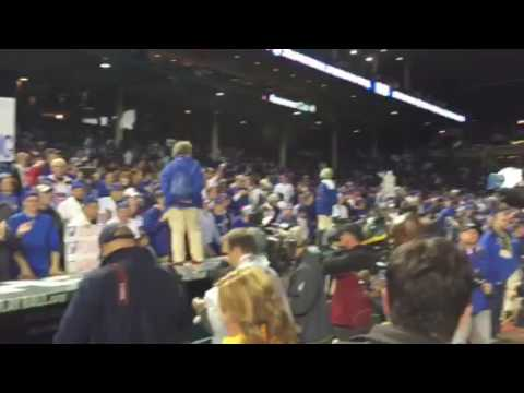 Cubs celebration continues, from Tampa Bay Times