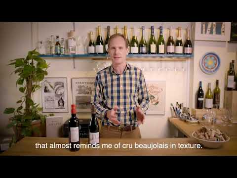 Wines of the week - Lighter Reds