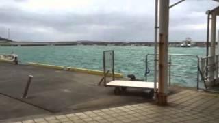 西表島   上原港   2016.02.15