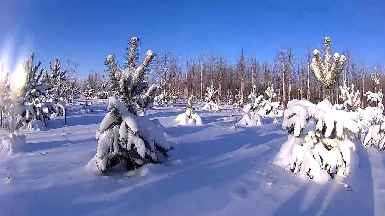 Полипропиленовые сани для снегохода. Пропиленовые сани и снегоход .
