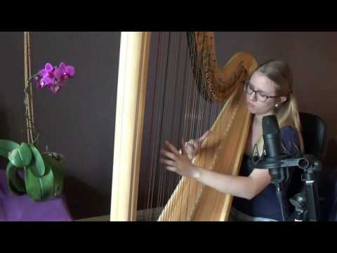 Ludwig van Beethoven - Moonlight Sonata no. 14 (harp version) 1st movement