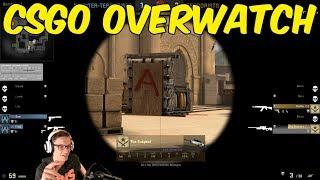 Surprise! - CSGO Overwatch