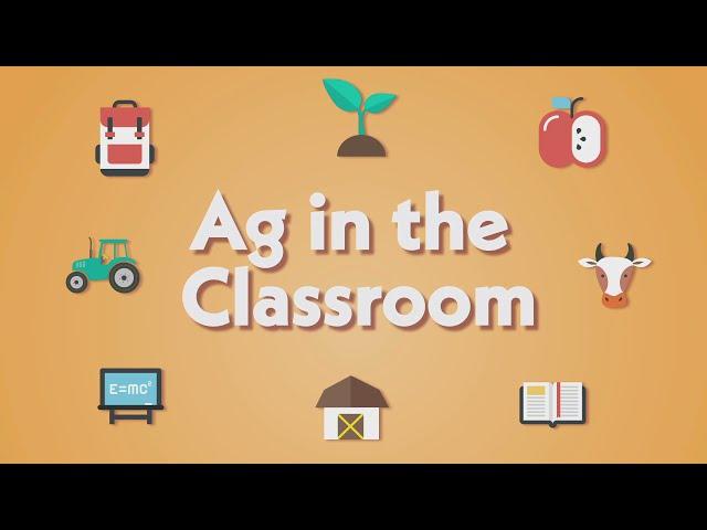 AITC: Grain Fed vs Grass Fed Beef