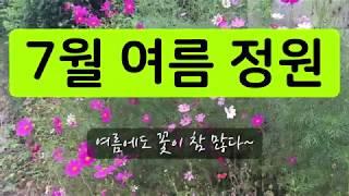 7월에도 볼 수 있는 꽃이 이렇게 많아요.